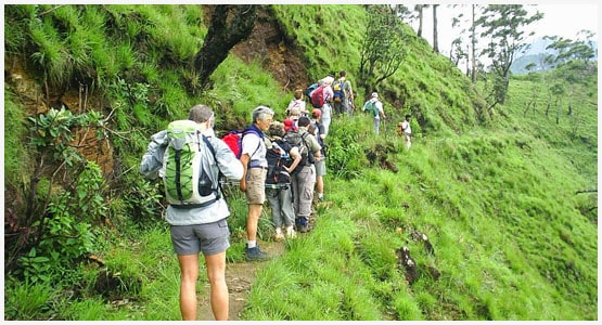 Trekking-and-Hikingwith-sri-lankan-tour-guide