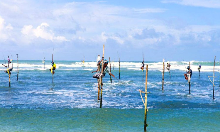 sri-lankan-tour-guide-tour-packages-6-stilt-fisherrmen
